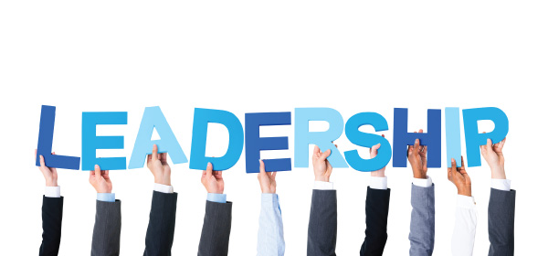 Leadership in campaigning – some thoughts