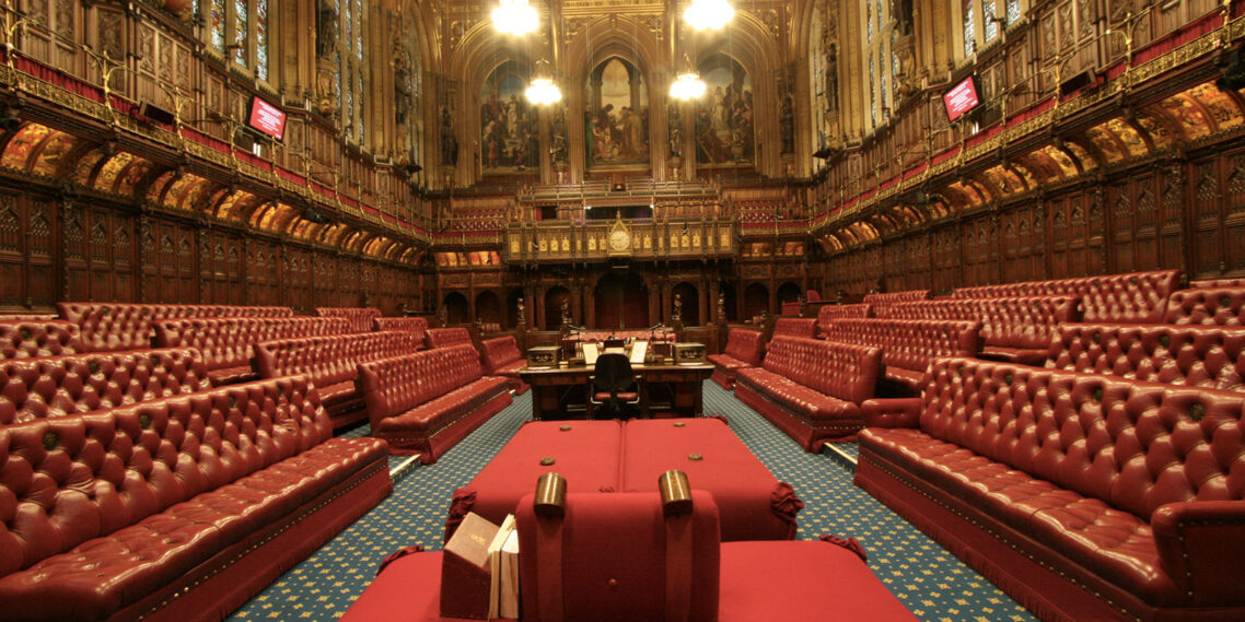 Meet the Lords – lessons for campaigners